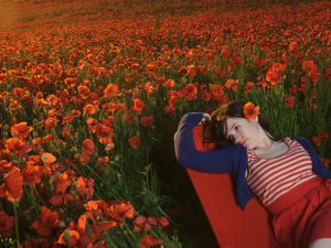 Location Lighting – Poppy Field